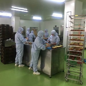 Food germ-free cleanroom